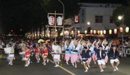 awaodori2010-1